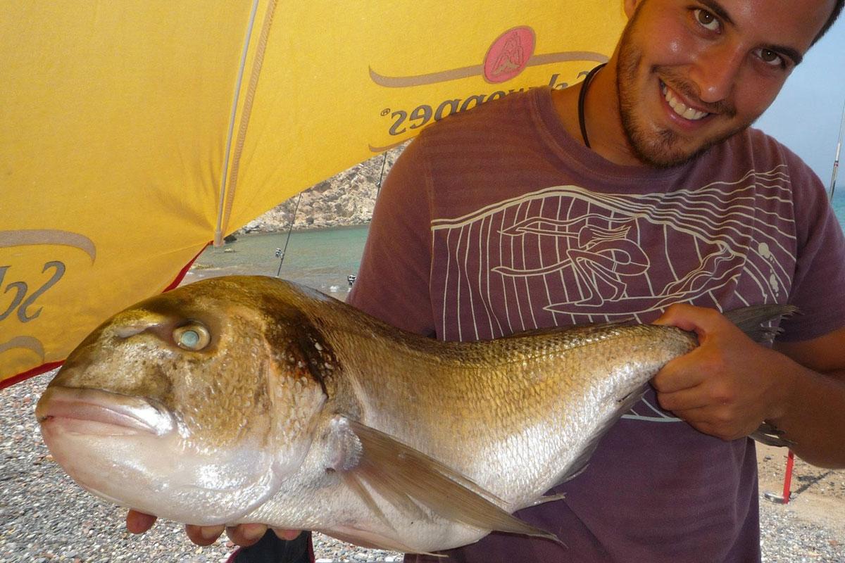 dorada xl pesca surf casting marruecos