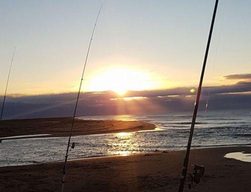 La Pesca, una afición
