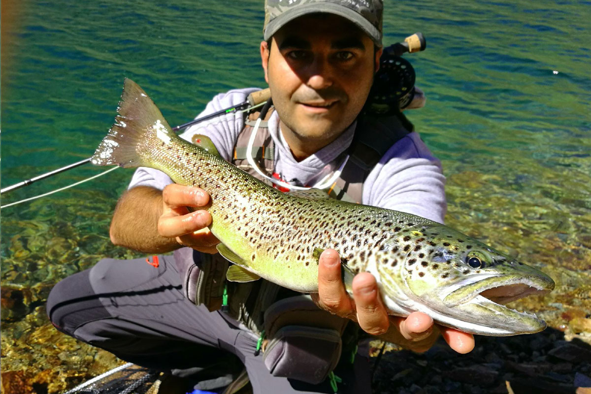 pesca a mosca trucha alta montaña