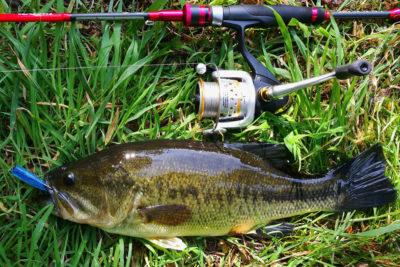 pesca del black bass con equipos ligeros