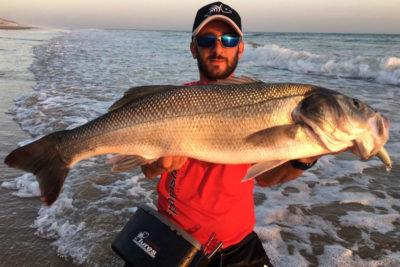 pesca de la lubina spanish lures