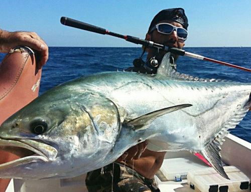 Palometón Pesca Spinning