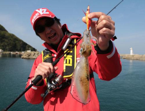 Cómo se pesca el calamar con caña