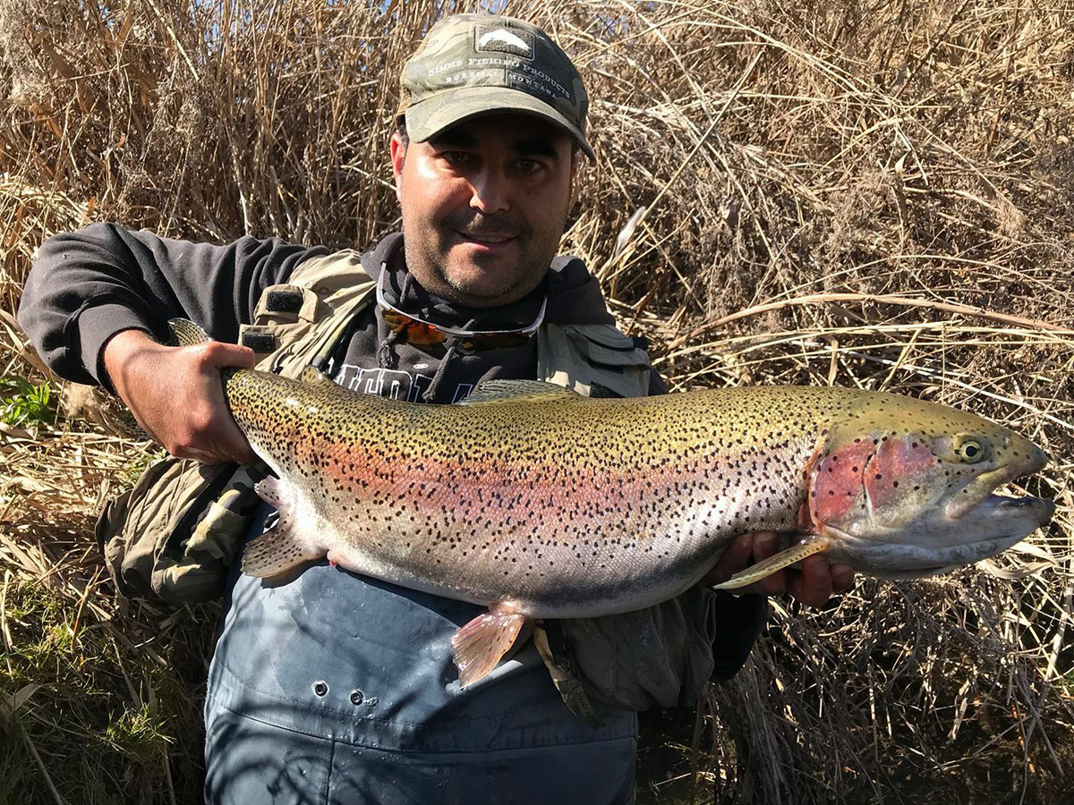 pesca ninfa trucha arco iris