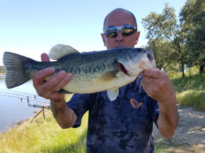 black bass embalse sierra brava