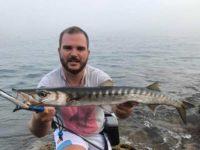 pesca barracuda a spinning