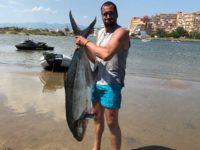 palometon pesca barco cebo vivo