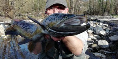 Truchas grandes: señuelos para truchas grandes y cómo pescarlas