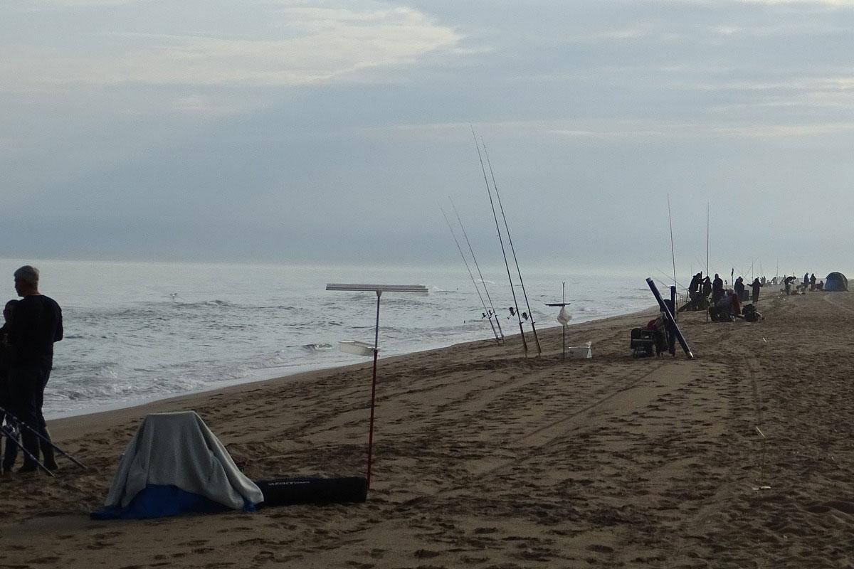 informacion material pesca