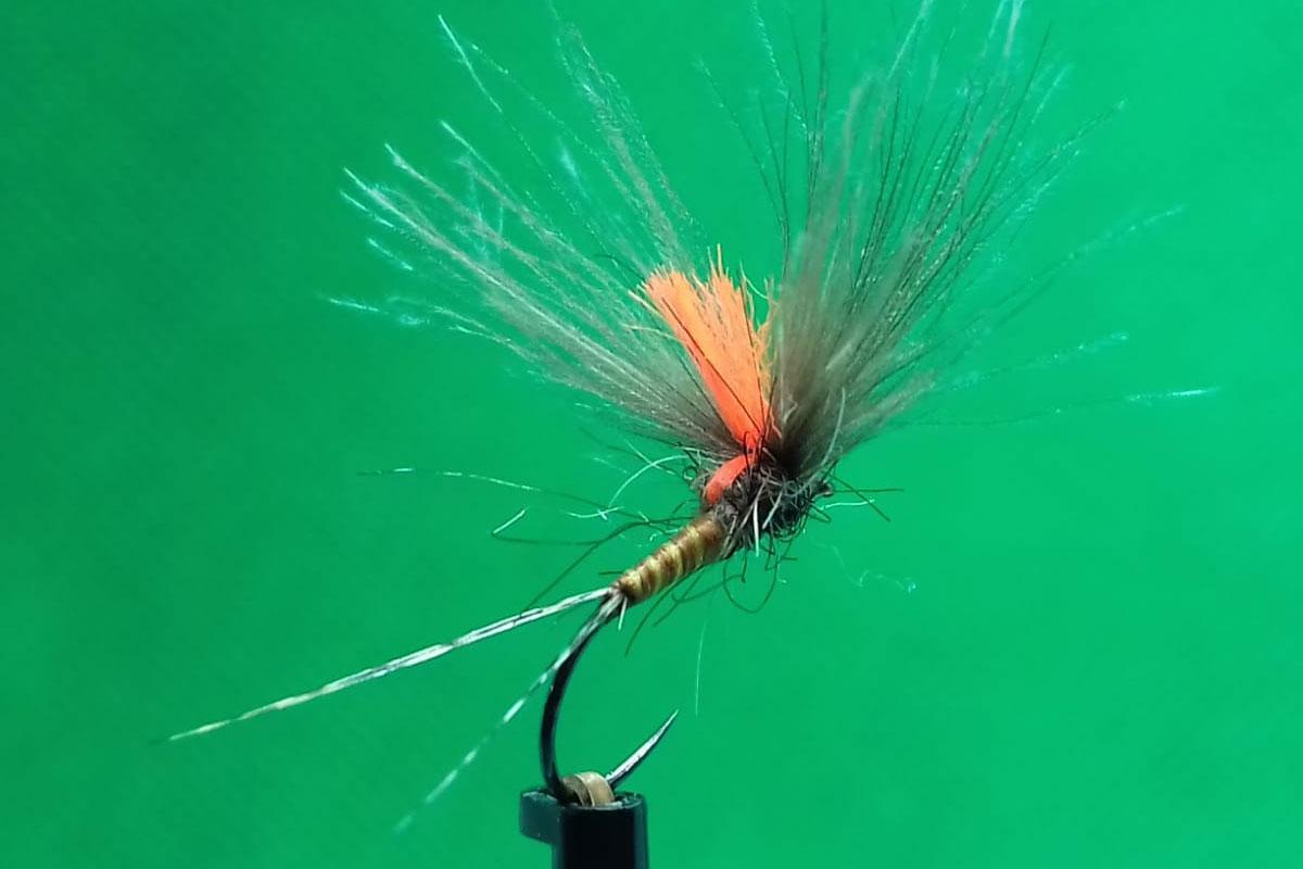 moscas secas competicion pardon